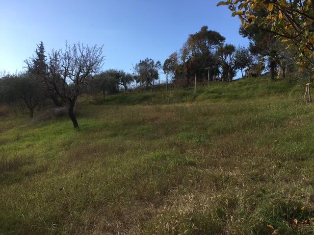 Terreno edificabile in Vendita a Monsampolo del Tronto #1