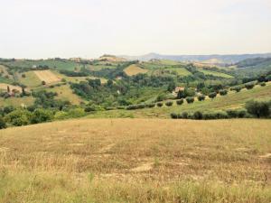 Terreno Agricolo in Vendita a Monsampolo del Tronto #6