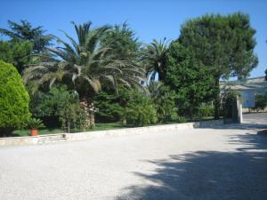 Villa in Vendita a Spinetoli #3