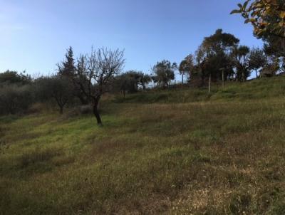 Terreno edificabile in Vendita a Monsampolo del Tronto #6
